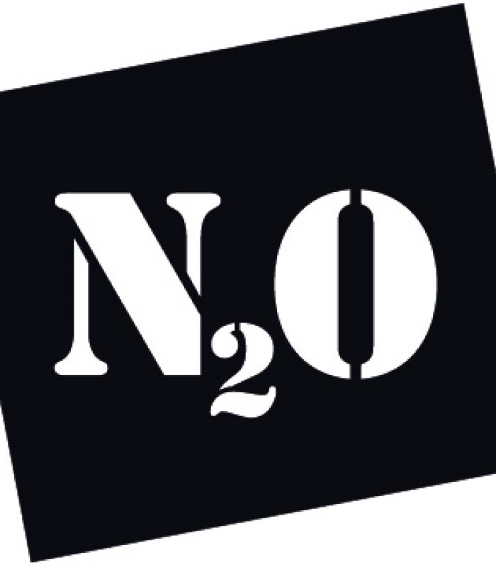N2oLogoNeu